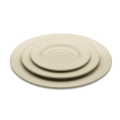 Plain Ivory Dinnerware Pattern