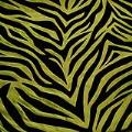 Lime Green Zebra Tablecloths