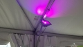 2 LED Fixtures Per Section of Frame Tent