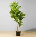 3ft Fafa Fiddle Leaf Potted Plant