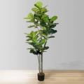 6ft Nora Fiddle Leaf Potted Plant